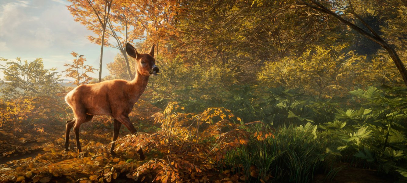 theHunter Call of the Wild Análisis (4)