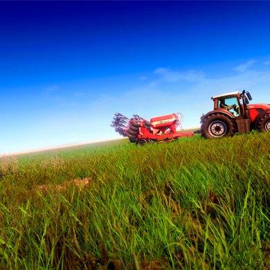 lanzamiento de Real Farm