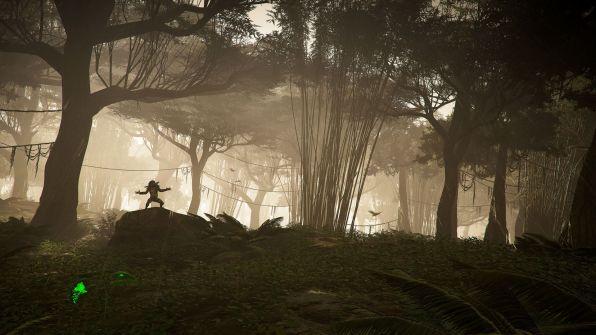 Jungle Storm