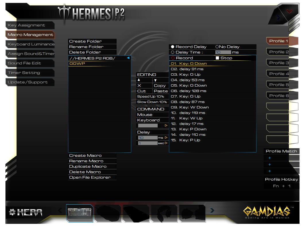 Gamdias Hermes P2 RGB