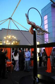 showgirl outdoor aerialist