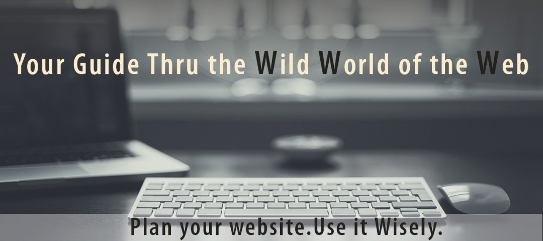 Your guide thru the wild world of the web. plan your website use it wisely. small business website design