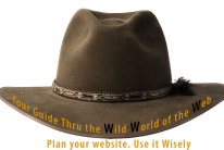 safari hat your guide to the wild world of the web