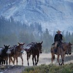 Equestrian Logistics Pacific Crest Trail Association