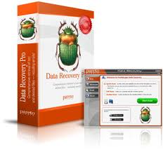 Data Recovery Pro Review