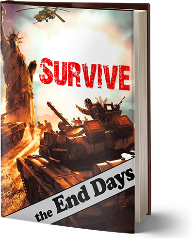 Survive the End Days 2