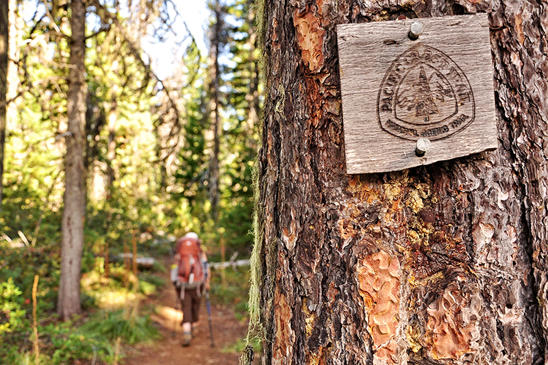5 Tips for Fall Hiking