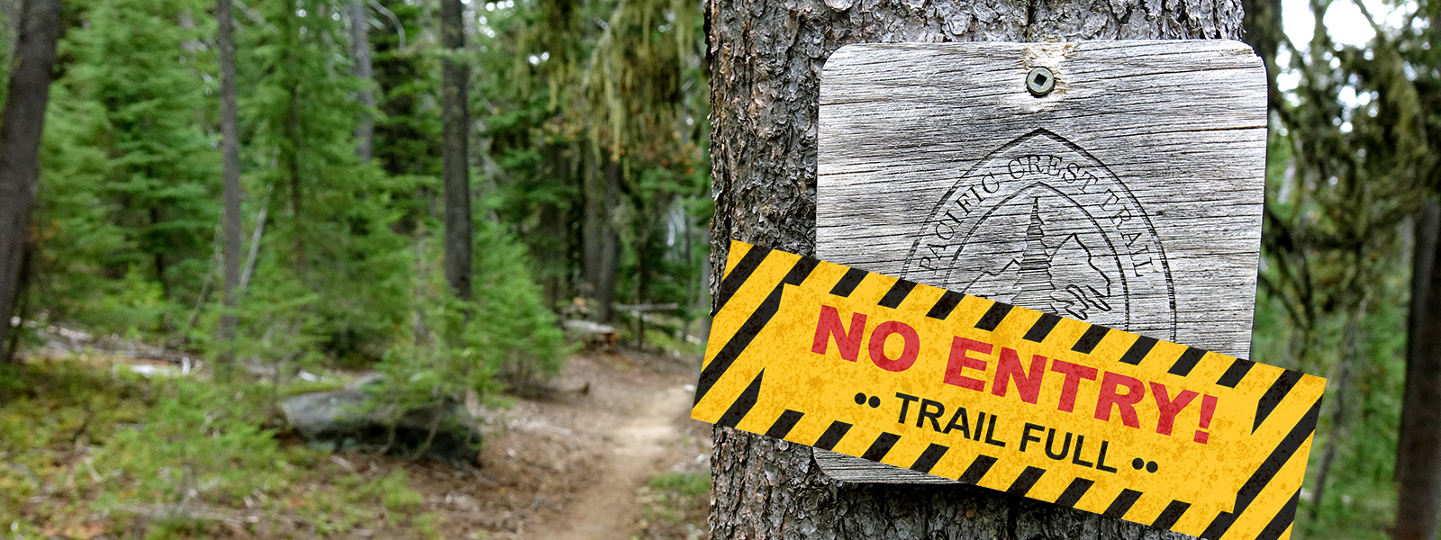 New Oregon Cell Phone Law 2020 New Access Limits Coming to Oregon PCT in 2020   PCT: Oregon