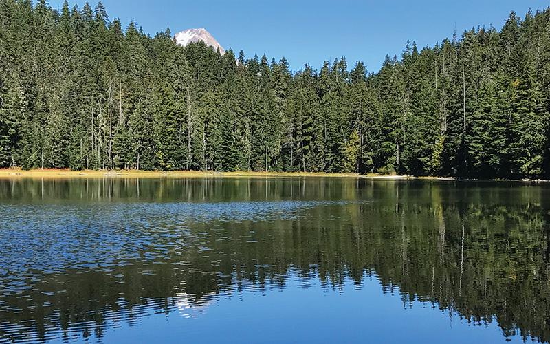 twin lakes mount hood wilderness oregon