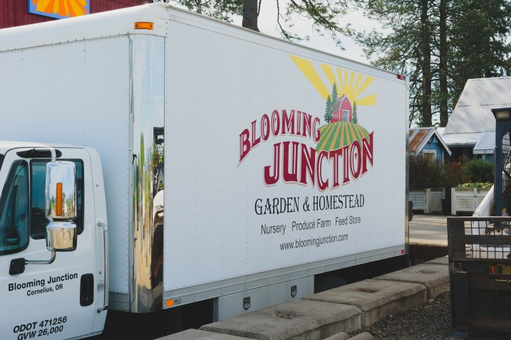 Blooming-Junction-2773