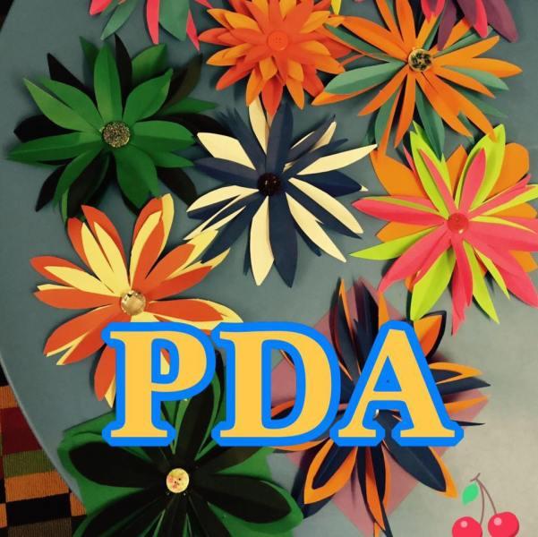 The Spectrum PDA Society NI