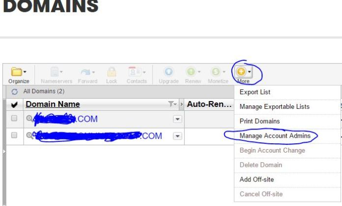 how can i make a friend admin to my Domain name registred with Godaddy
