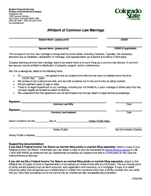 121 Printable Affidavit Of Marriage By Common Law Forms And