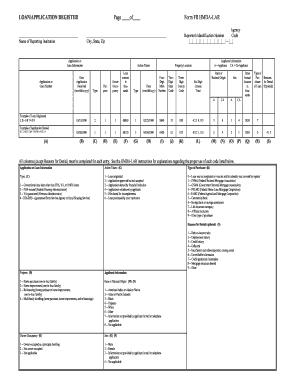 Hmda Lar Code Sheet