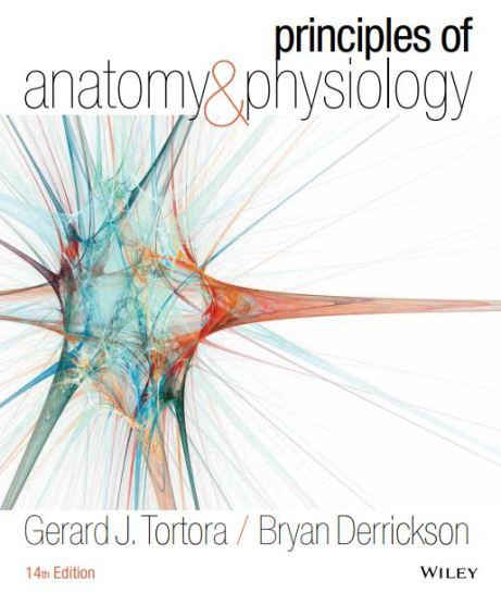 Principles of Anatomy and Physiology 14th edition pdf download Tortora