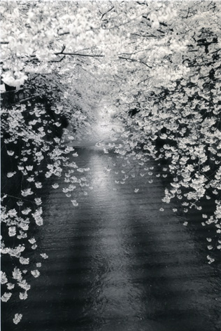 KAWA=FLOW #1534 / Masao Yamamoto