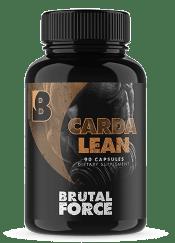 Brutal Force Cardalean Peace Building Portal Review