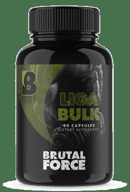 Brutal Force LIGABULK Peace Building Portal Review
