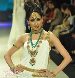 Amrapali at IIJW 2012 - 1