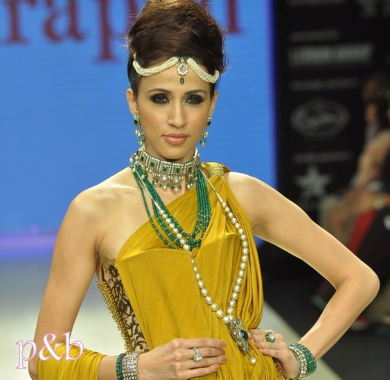 Amrapali at IIJW 2012 - 4
