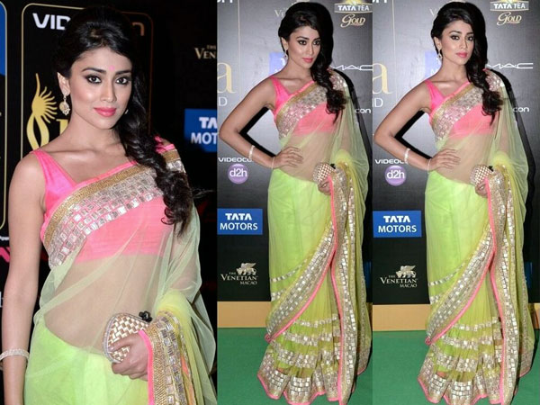 Shriya-Saran-IIFA-Awards 2013