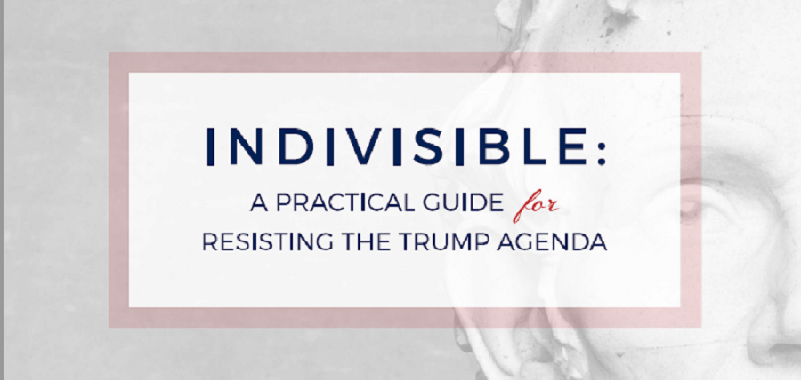 Indivisible: How You Can Speak Out Against Trump
