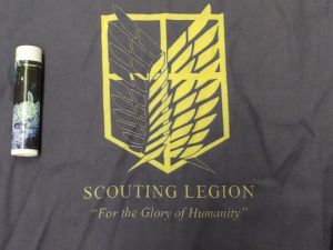"""Wings of Freedom (a shield, with yellow and black wings) from Attack on Titan with text """"Scouting Legion: For the Glory of Humanity"""""""