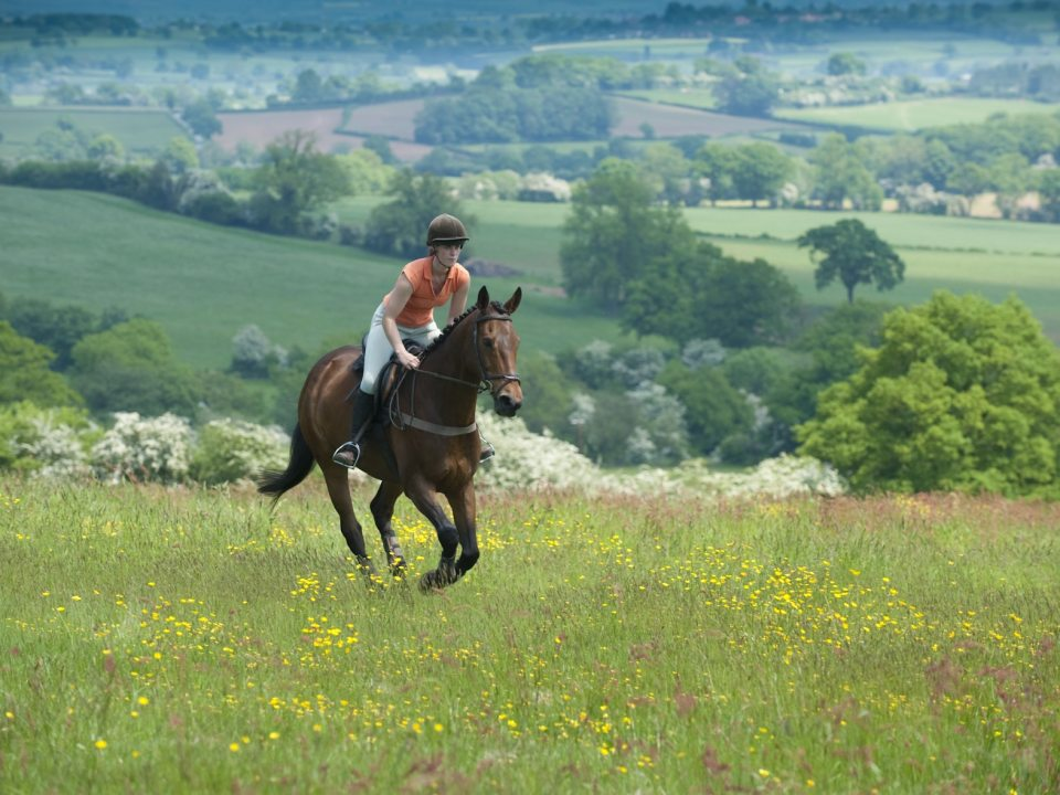 Horse riding in the peak district