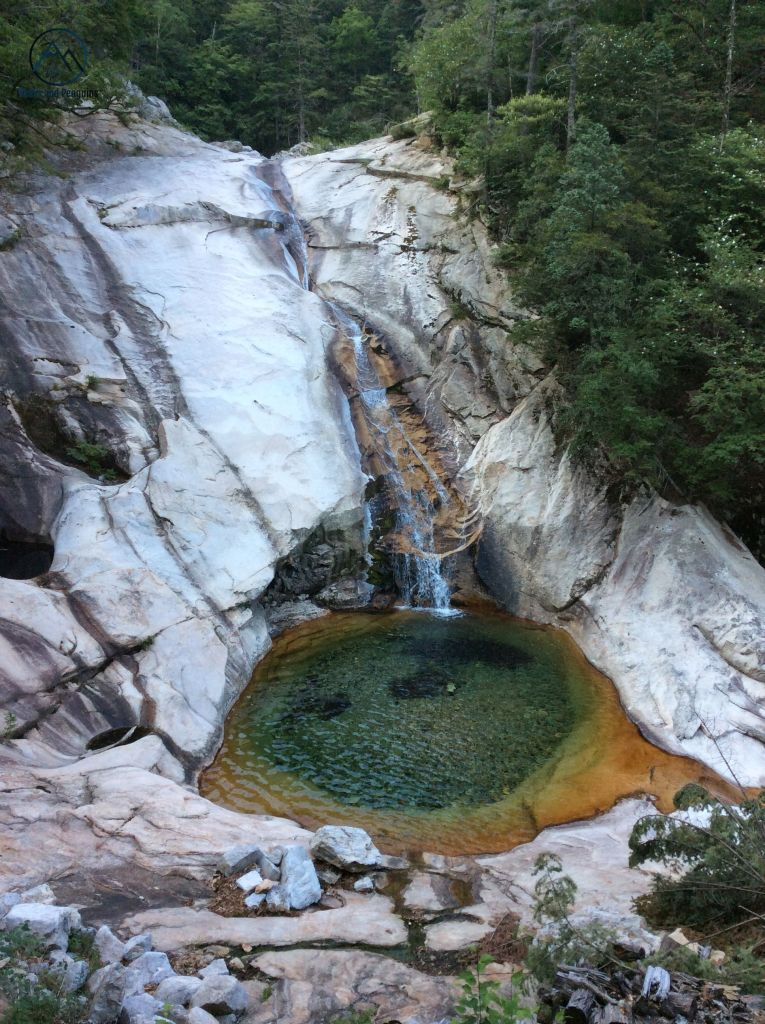 An image of a pretty waterfall pouring into a beautiful, multicolored pool. Green forest, comprised mostly of pine trees, surrounds the pale grey rocks central in the picture. The pool at the base of the waterfall appears orange on its outermost edges and shades of green closer to the center.