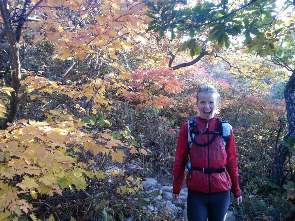 An image of Carrie in the forest near the summit of Seoraksan National Park. She's wearing a red jacket and a running vest, and is standing on a trail surrounded by brilliant fall foliage in reds, yellows, oranges and greens.