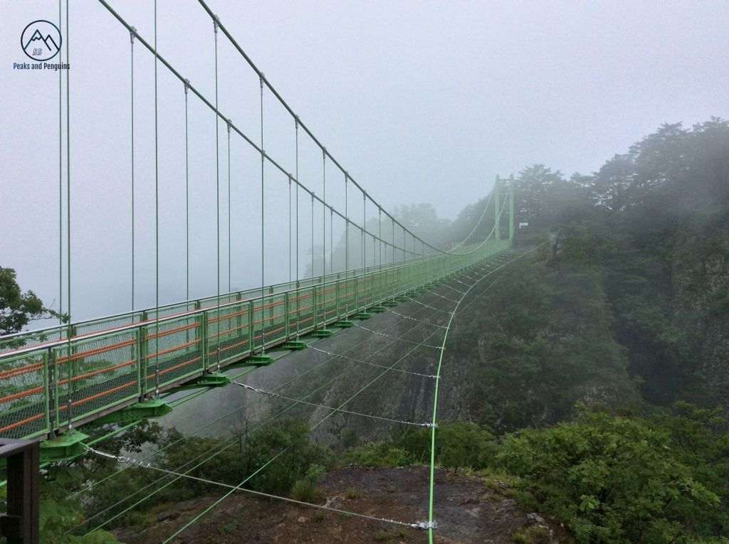 Another image of the suspension bridge. This image shows the bridge in profile, with the many cables that maintain its suspension. The bridge is long enough that the far end is nearly lost in mist, as is the deep canyon that drops away beneath the bridge.