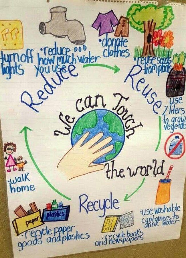 create an environmental educational