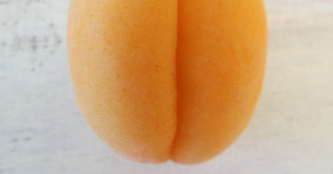 Apricot Fanny