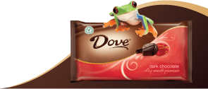 Dove's Dark Chocolate