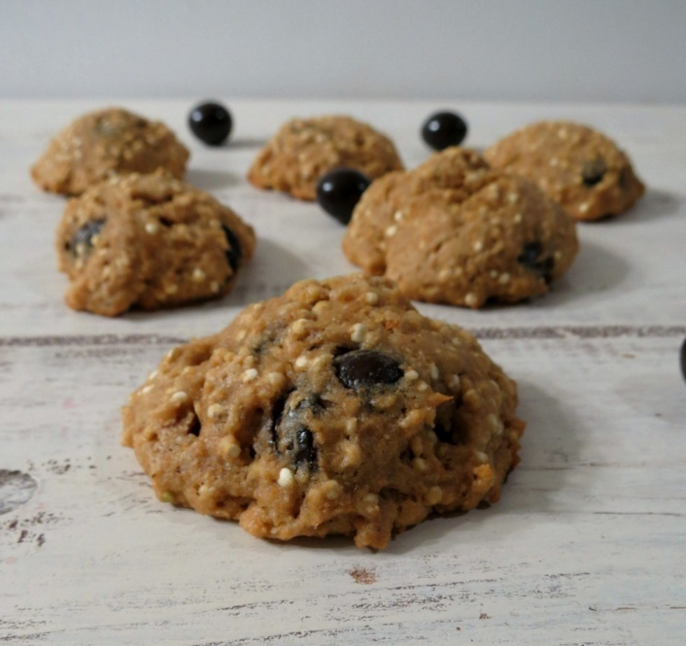 Acai Bluberry Quinoa Cookies 018a
