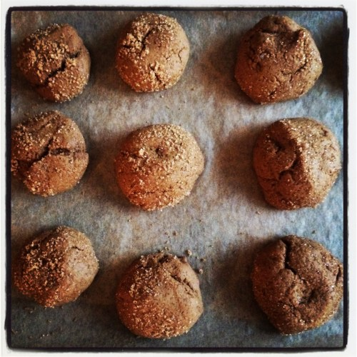12.22cookies