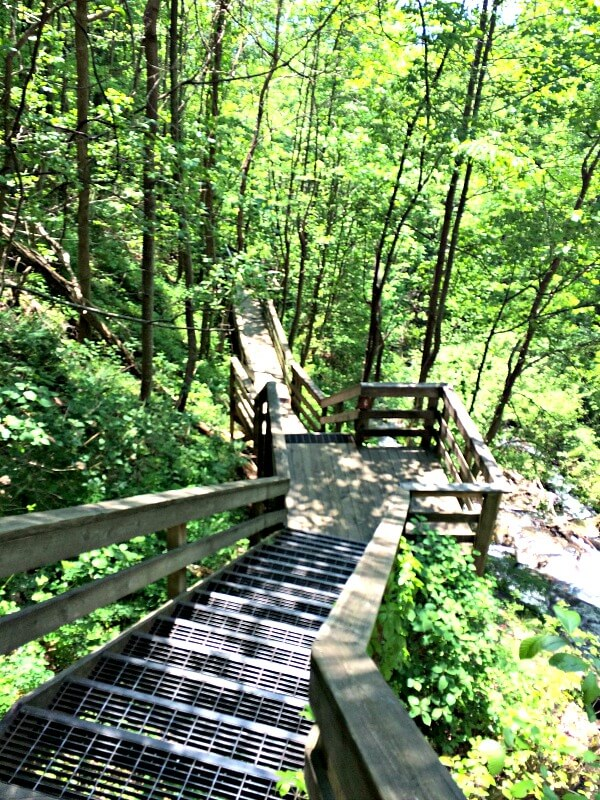 stairs to waterfall