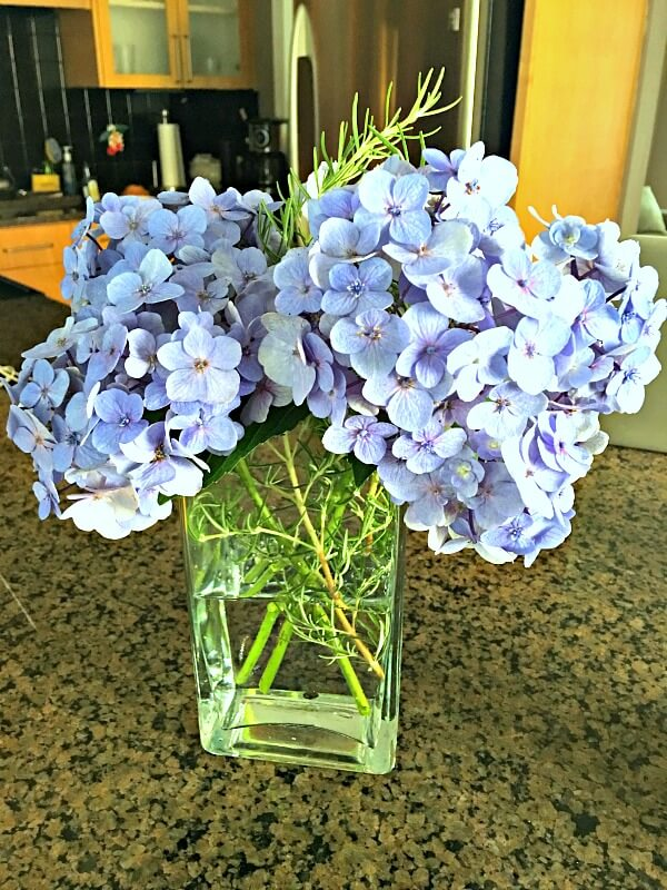 Fresh Cut Hydrangeas and Rosemary