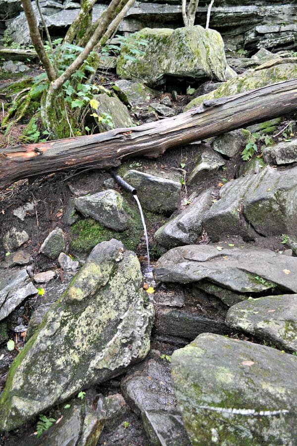 Shanty Spring Profile Trail