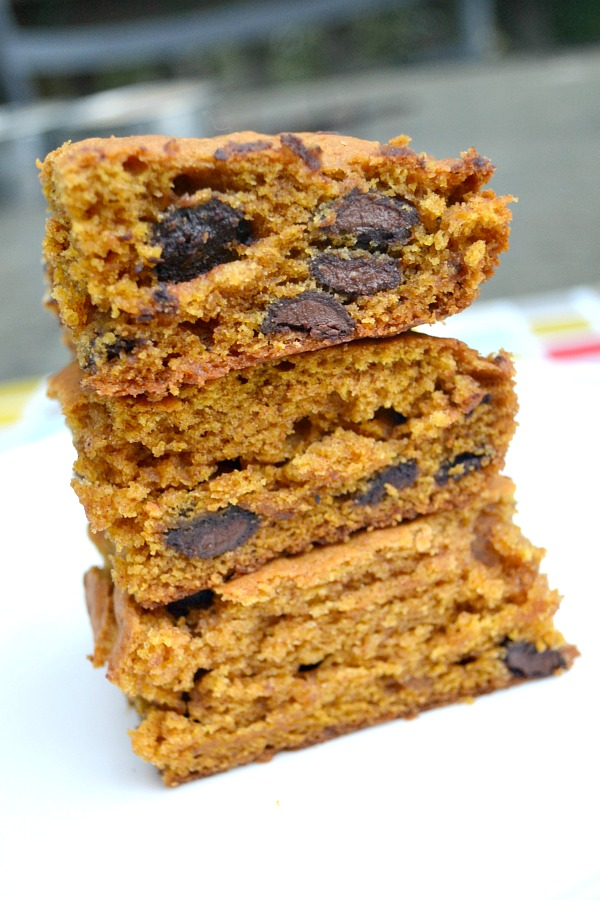 Soft & Cakey Pumpkin Chocolate Chip Bars