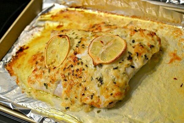 grouper parmesan