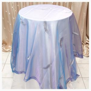 Blue Sheer overlay with feathers