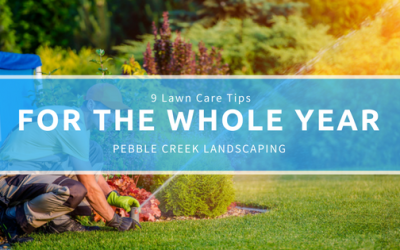9 Lawn Care Tips For the Whole Year