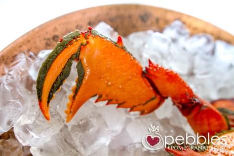 fraser-isle-spanner-crabs2