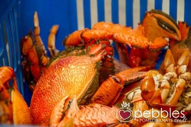 fraser-isle-spanner-crabs4