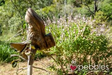 organica-floret-roses16