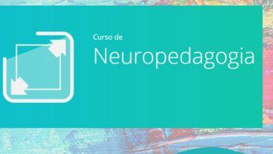 Photo of UEMA oferece curso de Neuropedagogia Grátis EAD – 2020