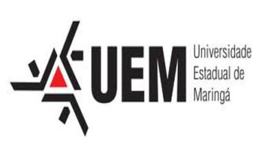 Foto de Universidade Estadual de Maringá abre inscrições para 1030 vagas em cursos de graduação EAD