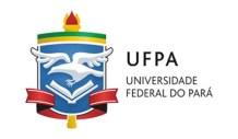 professor substituto UFPA 2020