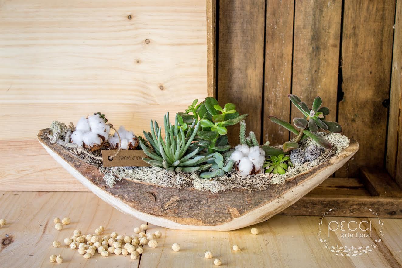 centro-plantas-canoa